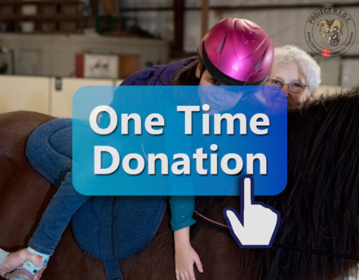 Donate to Project RIDE - One Time Donation